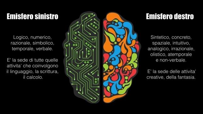 Cervello.002