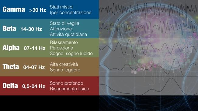Cervello.003